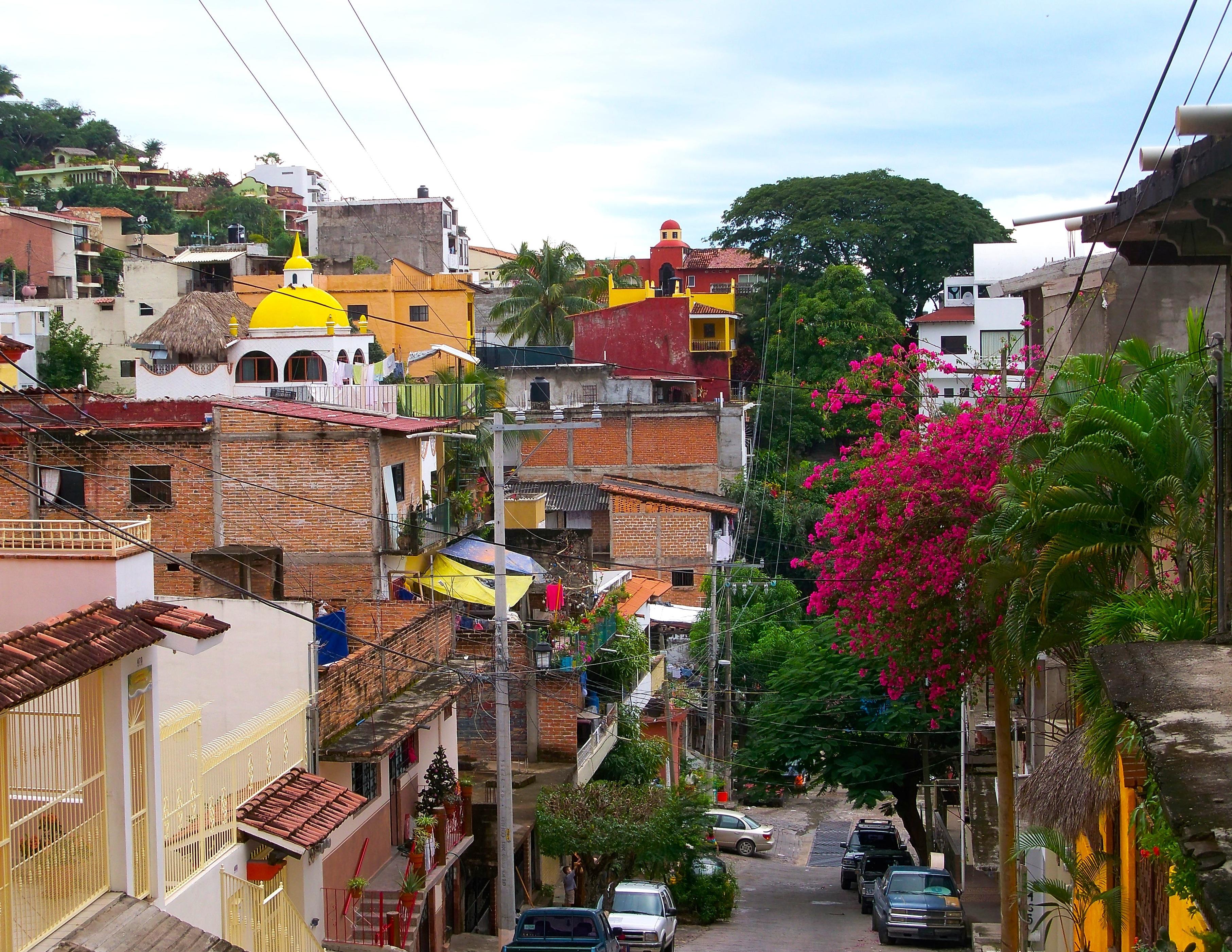 Calle Jacarandas